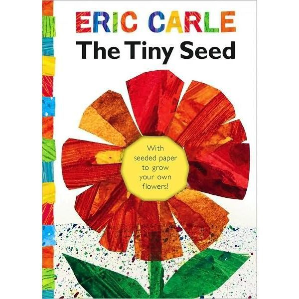 Use The Tiny Seed with These First Grade and Kindergarten Math Activities