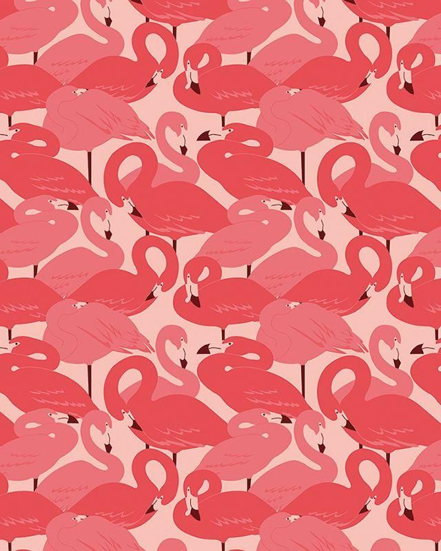 Flamingos by Esther Lara