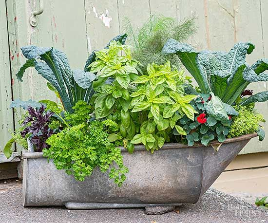 Even if your veggie garden is confined to a container, you can make it a showstopper.