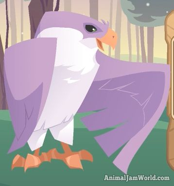 Animal Jam Falcon Codes animal-jam-falcon-codes-2  #AnimalJam #Animals #Falcon http://www.animaljamworld.com/animal-jam-falcon-codes/