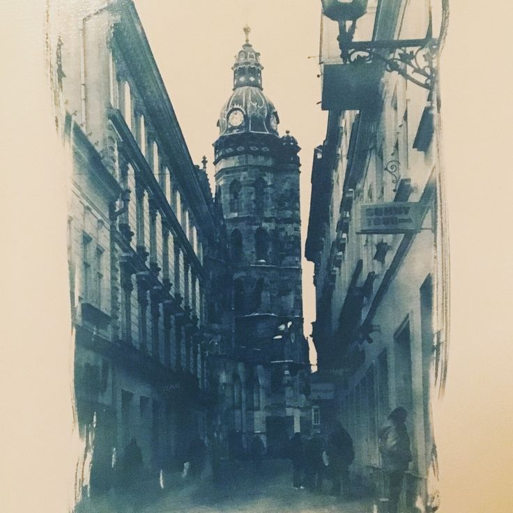 Art project My region. Cyanotype