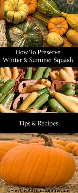 canning and preserving winter and summer squash