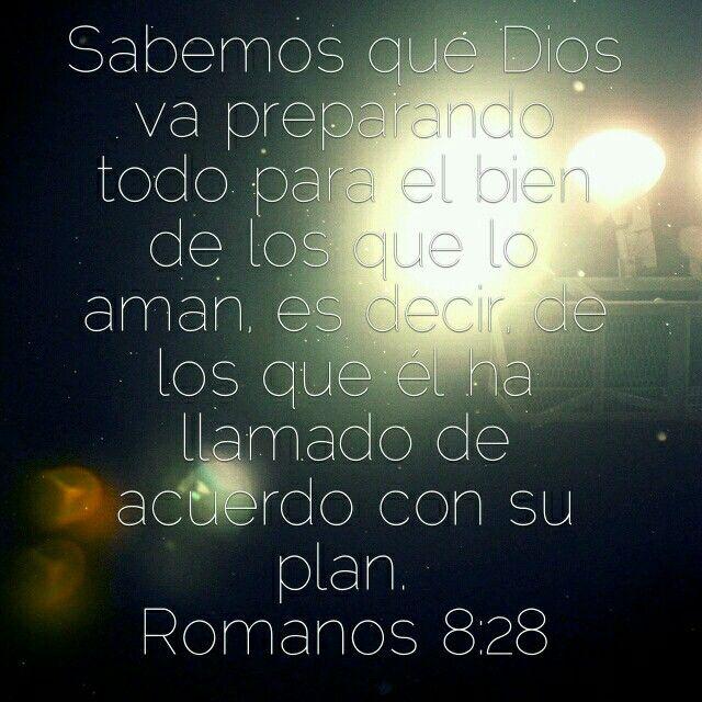 Rom 8:20