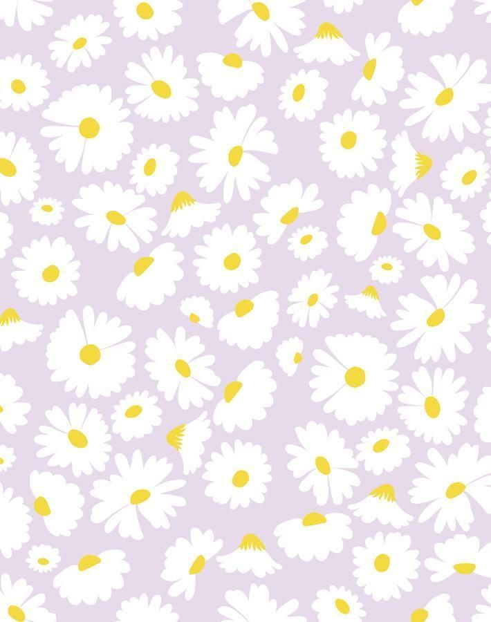 Pop Daisy Lavender Daisy Wallpaper Cute Patterns Wallpaper Iphone Background