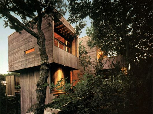Best Treehouse Images On Pinterest The Tree Treehouses - Contemporary banyon treehouse california