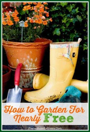 How To Garden For Nearly Free · Gardening SuppliesGardening TipsUrban ...