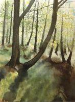 Wiosenny las by sezarka