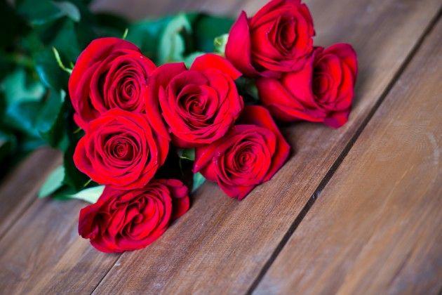-rosas rojas