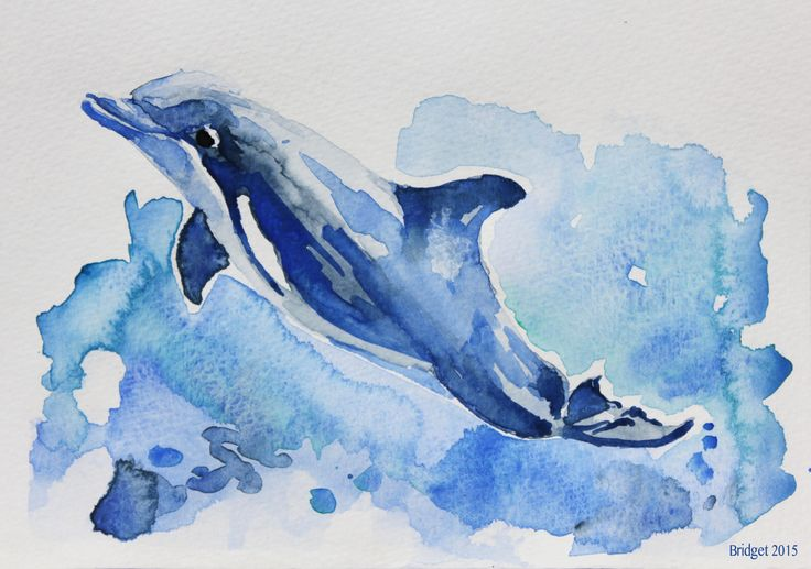 watercolor painting dolphin - Google Search