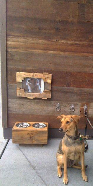 Reclaimed barn siding finds new life on the exterior of a Seattle coffee shop. The wall rather than the dog....
