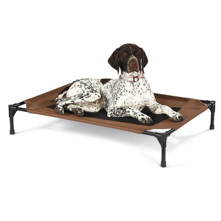 Dog Beds Off The Ground Uk