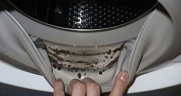 Come per ogni altro elettrodomestico, anche la lavatrice ha bisogno di una pulizia e manutenzione regolare. Quindi, se noti delle strane macchie scure tra le guarnizioni o nella vaschetta del detersivo, oppure se il bucato pulito comincia ad avere un cattivo odore, probabilmente è giunto il momento di pulire la tua lavatrice. Tieni presente che, oltre ad effettuare un cattivo lavaggio, la lavatrice in queste condizioni potrebbe contenere un fungo nocivo alla nostra salute. Le condizioni…