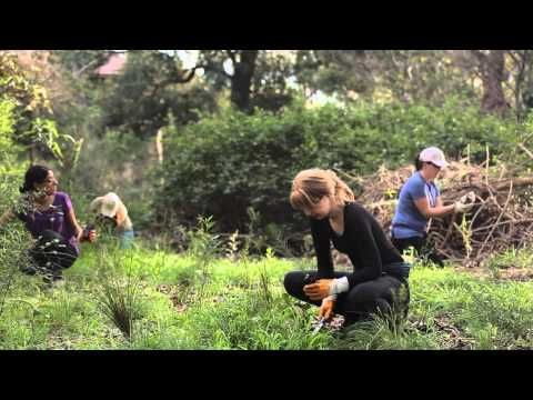 A Day in the Life of Landcare - YouTube