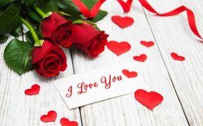 Обои красные розы, бутоны, день святого валентина, любовь, розы, романтичные, розы, красный, сердце, я люблю тебя, цветы