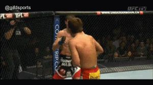 Top 5 MMA Knockouts of 2014