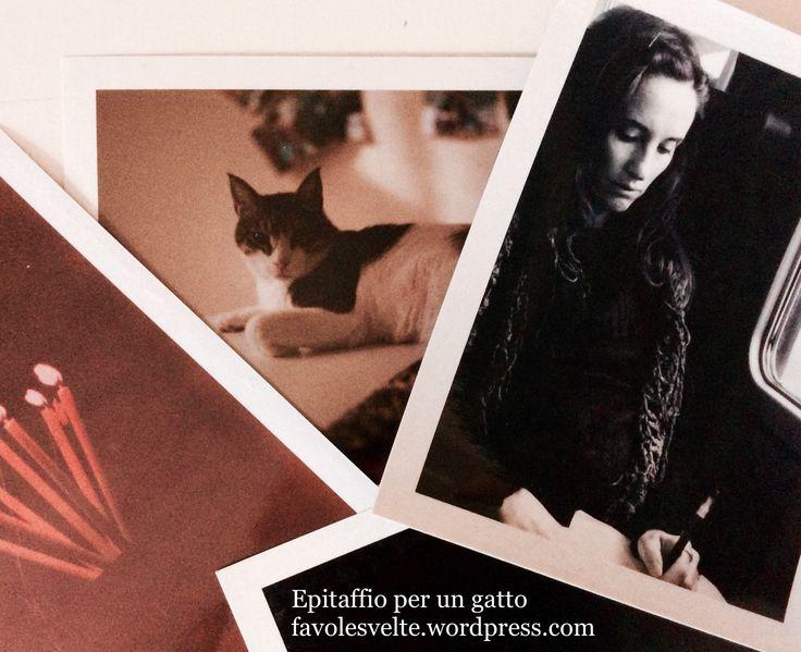 https://favolesvelte.wordpress.com/2017/09/15/due-poesie-per-un-gatto-epitaffio-coi-baffi/