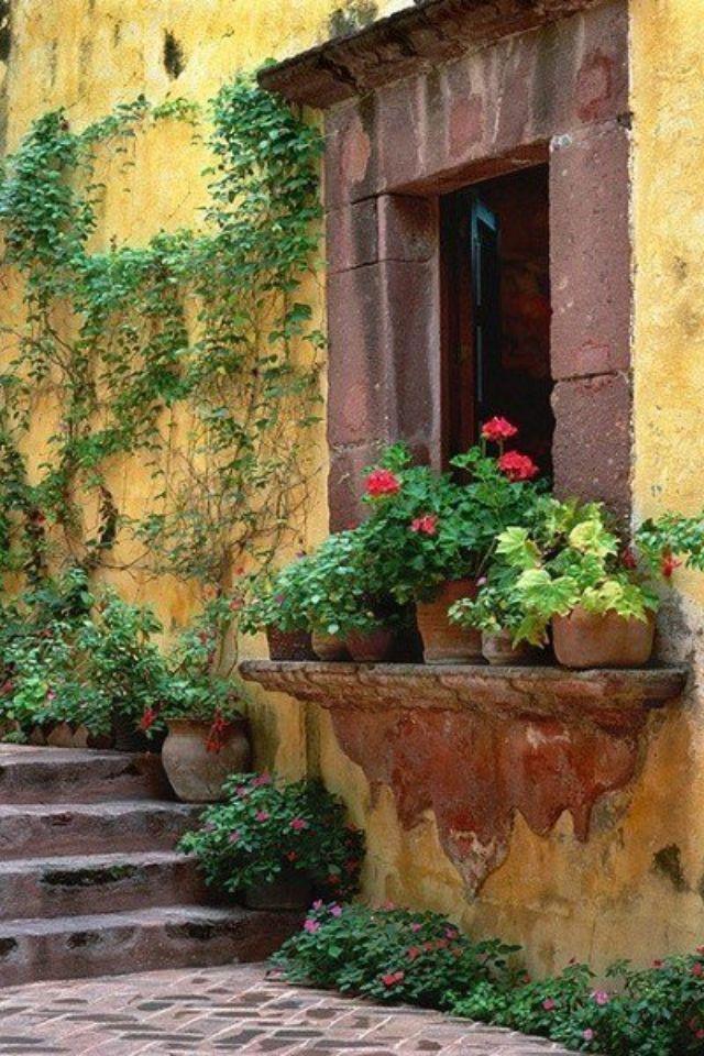 Charmosa fachada de casa. *⊱•Fachada ~•~ Facade •⊰* #Portas #Portões #Janelas #Entradas #maçanetas #fechaduras #windows #door #gates #entrance #door handle #cadeado #padlock *⊱• Flores ~•~ Flowers ~•~ Fleurs •⊰ #cores #Cores #Cor #Colorido #Colorindo #Pintado #Pintar #Tingir #Tingido #Tom #Tons #Pincel #Tinta #Estampa #Forma #Tonalidade #Vida #Vivacidade #Energia #Alegria #Alegre #Vibrante #Animado #Intenso #Animação  #color #Color #Colorful #Coloré #Colorato #couleurs #Colori #Tone #Ton #…