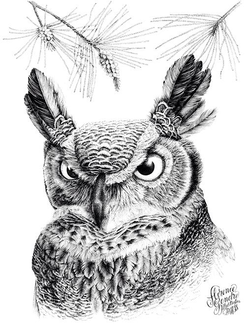 Illustration portrait de hibou Grand Duc d'Amérique Florence Gendre #illustration #hibou #owl # grandDuc #pointillism