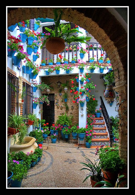 Cordoba, Spain Patio,  SPAIN.