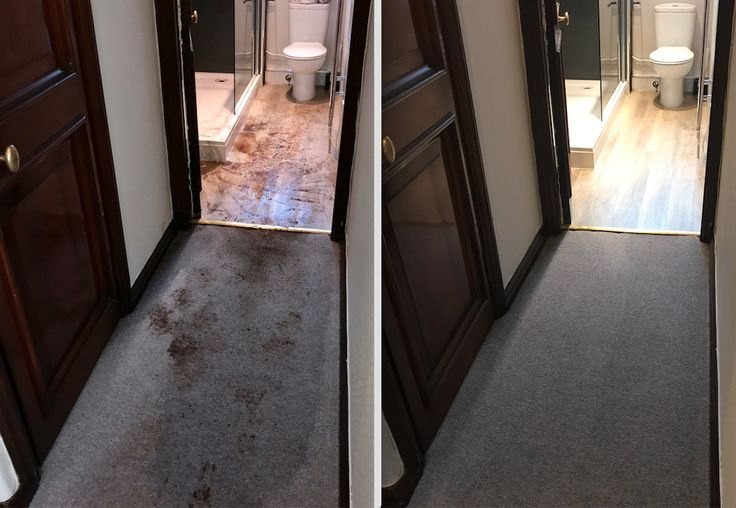 West Highland Specialist Cleaning Services Oban Argyll Bathroom Flood Clean Up Carpet Cleaner