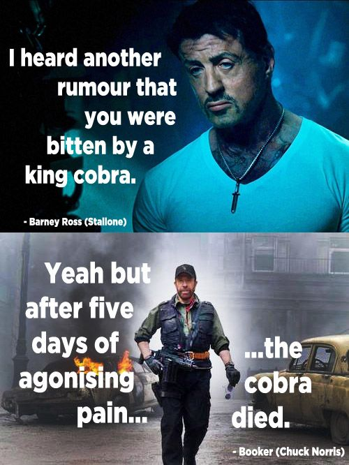 The Expendables 2: When Chuck Norris makes a Chuck Norris joke! ----Your argument is invalid.