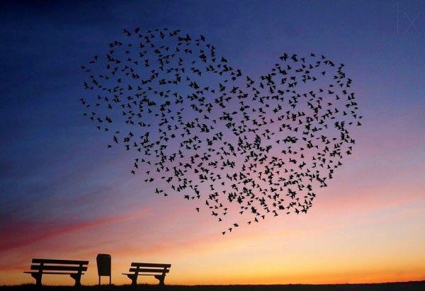 24 Delightful Love Photography