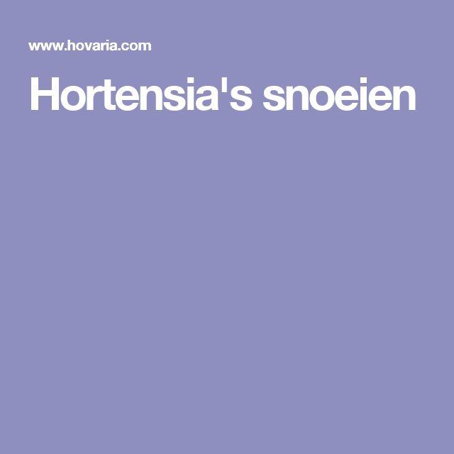 Hortensia's snoeien