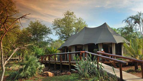 Chisomo Safari Camp, Limpopo, South Africa