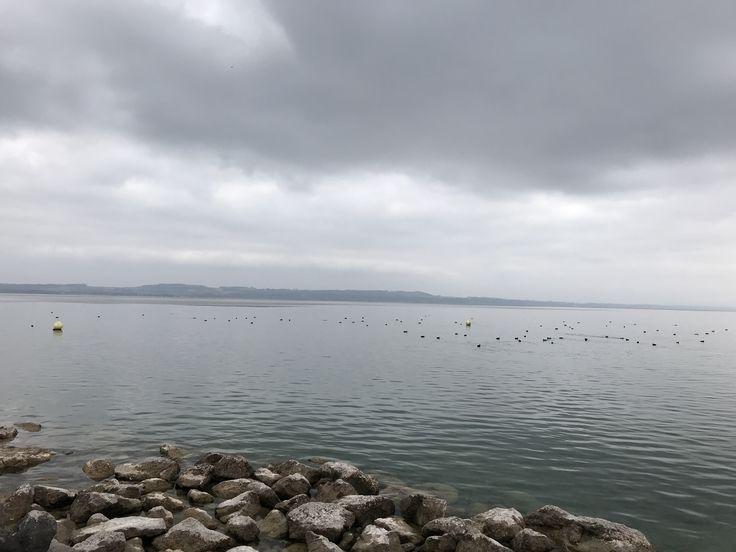 Lac de Neuchâtel 🇨🇭Switzerland