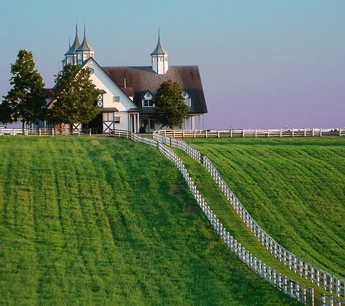 Lexington, Kentucky.... Lived in Lexington for 10 years and always loved driving by Calumet Farms.