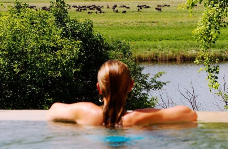 Visit Chobe, one of the best wildlife destinations in the world to see wildlife, such as elephant, lion and buffalo up close on safari drives & river cruises. Get great rates, instant quotes & online booking with this exclusive Desert & Delta property online with CAT only >>