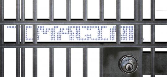Σε ποινή φυλάκισης 23 μηνών καταδικάστηκε ο Javier E. Ferrer, μέλος της ομάδας IMAGiNE, για διανομή παράνομου (πειρατικού) υλικού μέσα από την ιστοσελίδα διαμοιρασμού UnleashTheNet. Οι αρχές εισέβαλαν στο σπίτι του Ferrer στις 8 Σεπτεμβρίου του 2011 και κατάσχεσαν τον ηλεκτρονικό εξοπλισμό του 41χρονου ως αποδεικτικά στοιχεία.