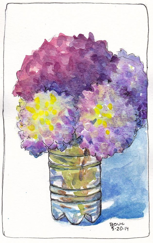 Hydrangeas in Glass, ink and watercolor, 7x5 in