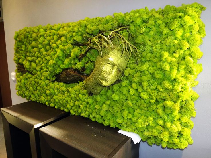 Obraz z mchu Islandzkiego. Ręcznie wykonany na płycie. Połączenie kilku technik plastycznych dało rewelacyjny efekt. Więcej na www.greenalleys.pl