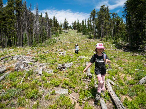Hiking Among Wildflowers on Baldy Mountain Resort – Backwoods Mama