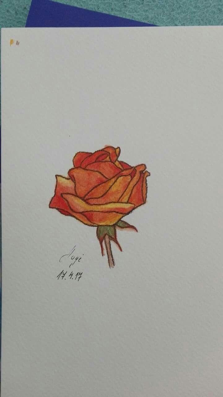 aquarell pencils rose