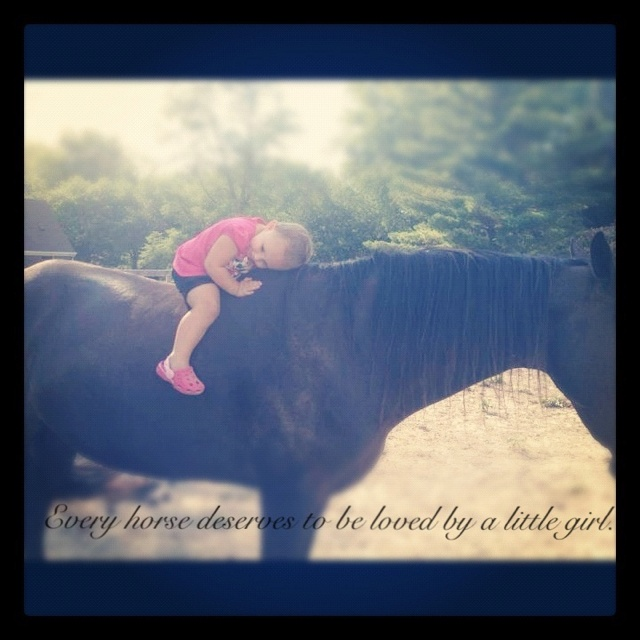 """Every horse deserves to be loved by a little girl."" Love my baby doll and her love for horses... So precious :)"