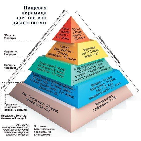 Вегетарианство. Пищевая пирамида | Ирина Ролина