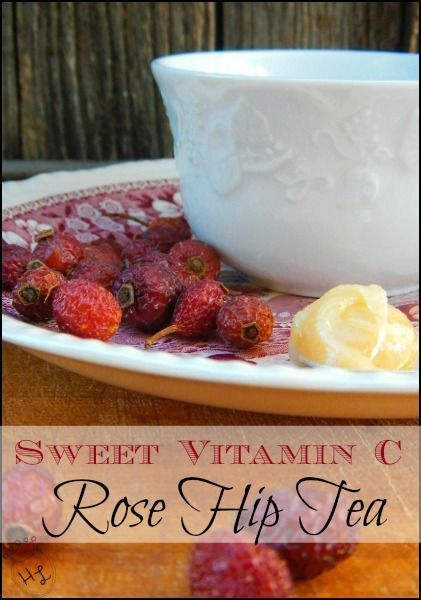Rose Hip Tea l A sweet way to get your winter Vitamin C l Homestead Lady (.com)