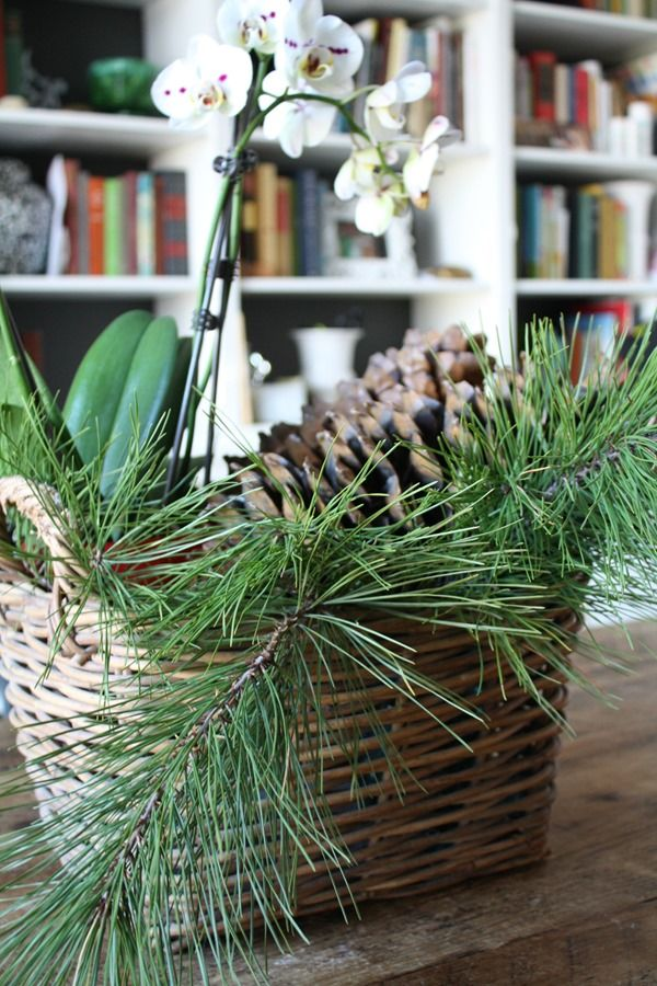 Snapshots of our house at christmas baskets centerpiece