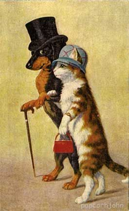 dachshund & cat vintage - funny, it looks like Willie and Cali