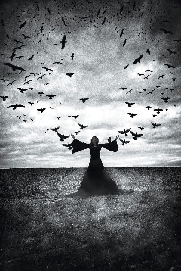 .: Witchy, Art, Witches, Dark Side, Crows, Photo, Black, Ravens