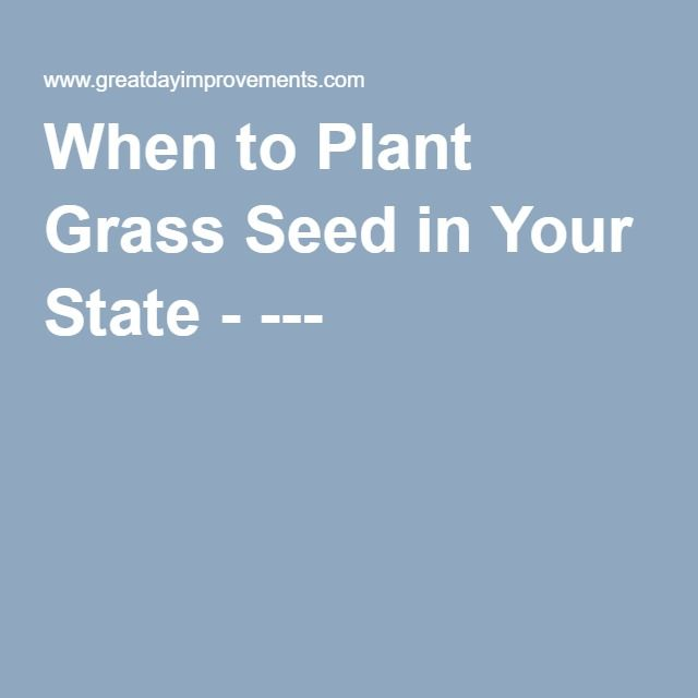 When to Plant Grass Seed in Your State - ---