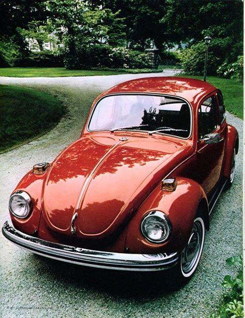 Classic VW beauty