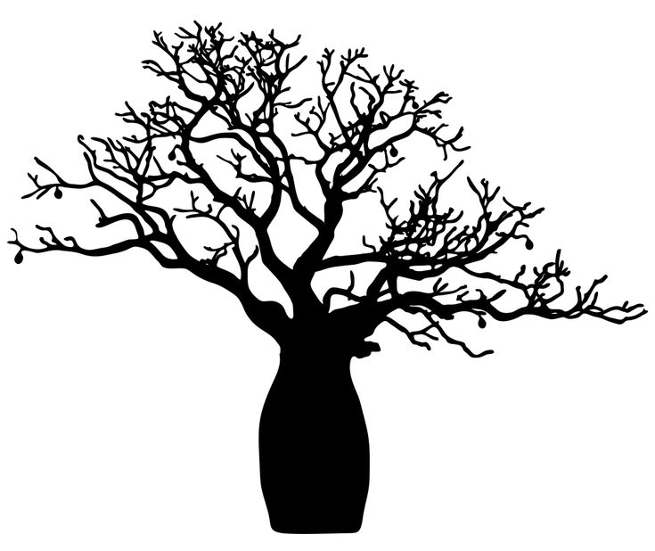 BOAB_tree.png (1000×841)
