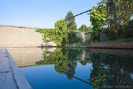 Een droom van een biologisch zwembad, zwemvijver met grijze liner - De Mooiste Zwembaden