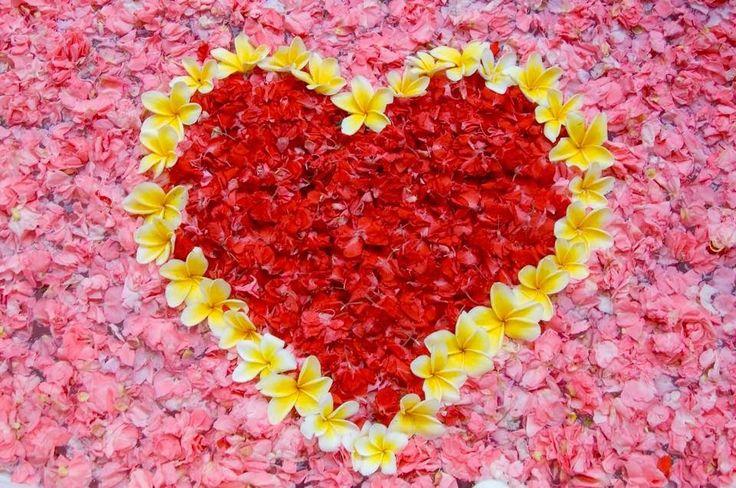 A szeretet azt jelenti, hogy megtanulunk tiszteletet tanúsítani mások iránt...  http://soulonefonix.blogspot.com/2015/03/a-szeretet-azt-jelenti-hogy-megtanulunk.html