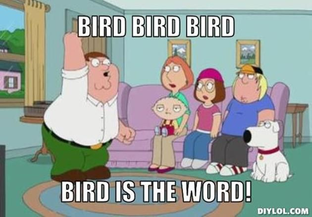 VH peter-griffin-meme-generator-bird-bird-bird-bird-is-the-word-c0849f