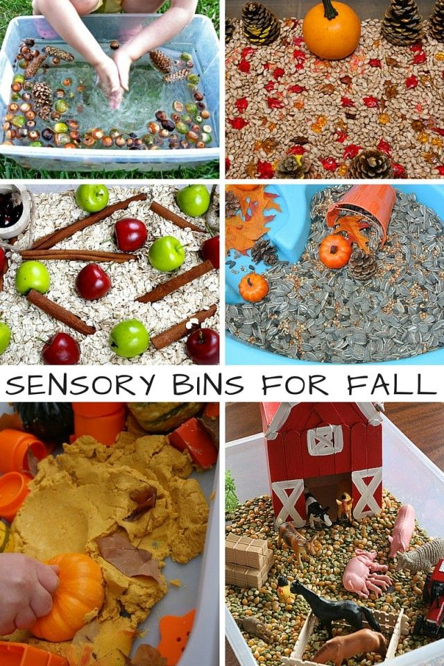 10 Sensory Bins For Fall