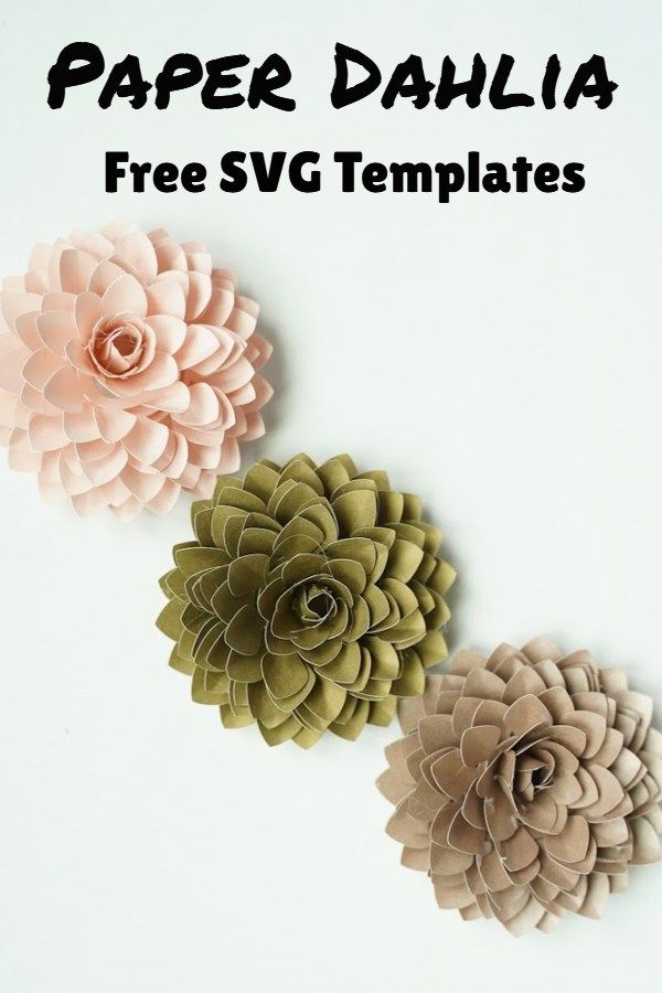 Paper Dahlia Template Domestic Heights In 2020 Paper Dahlia Free Paper Flower Templates Paper Flower Tutorial